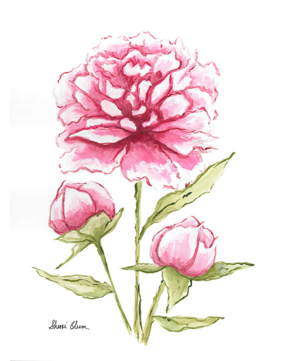Pink Peonies Watercolor Art Prints by Sherri Blum