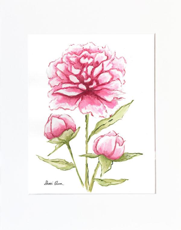 Peonies Watercolor Art Print by Sherri Blum