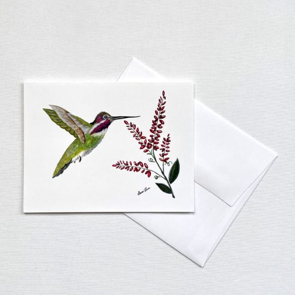 Hummingbird Blank Notecards Greeting Cards